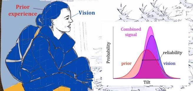 priorvision